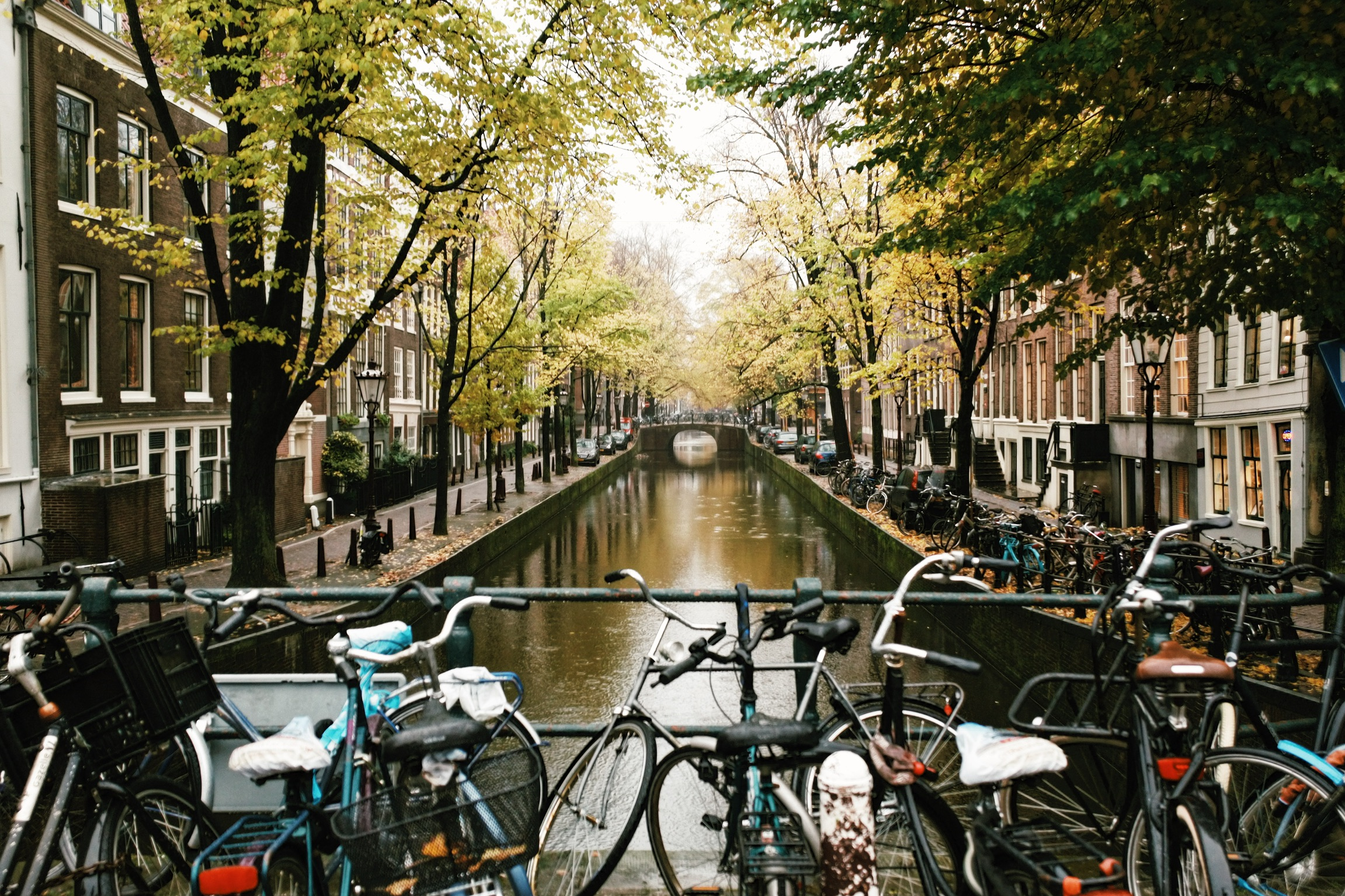 Tour-City-Guided-Amsterdam